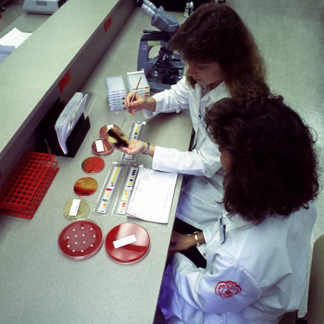 """""""Medical Lab Training"""" stock image"""