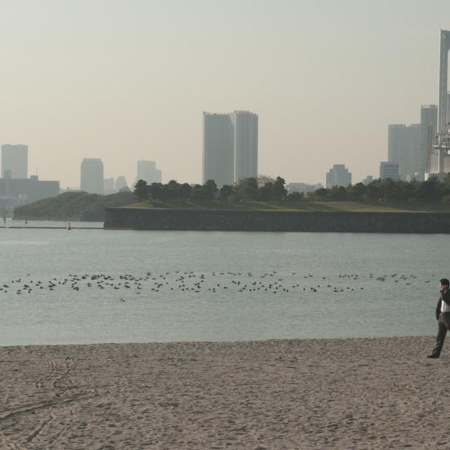 """Tokyo Bay"" stock image"