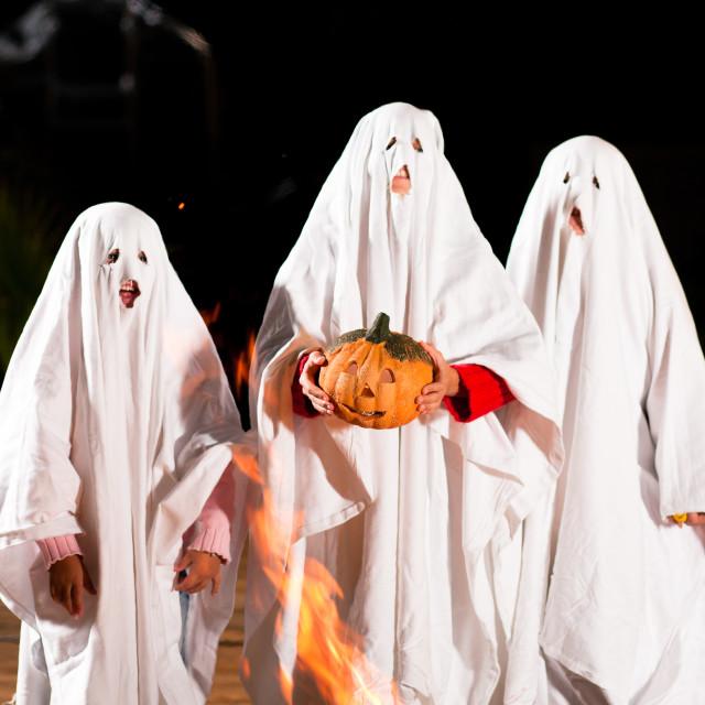 """spooks at Halloween (focus on pumpkin)"" stock image"