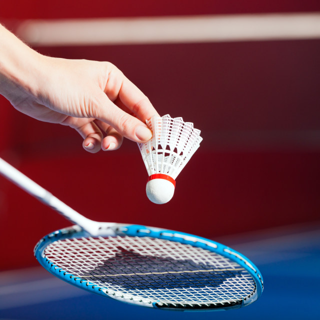 """Badminton sport in gym - hand with shuttlecock"" stock image"