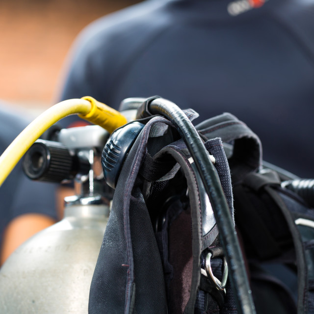"""""""divemaster and students at the diver Course on holiday wearing a wetsuit or..."""" stock image"""