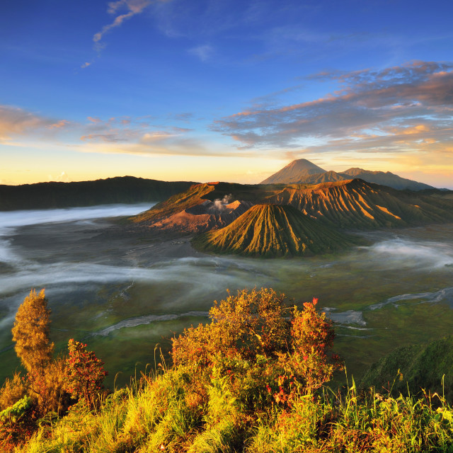 """Bromo volcano at sunrise"" stock image"