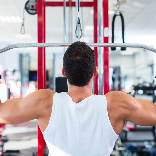 """""""Man at back sport training in fitness gym"""" stock image"""
