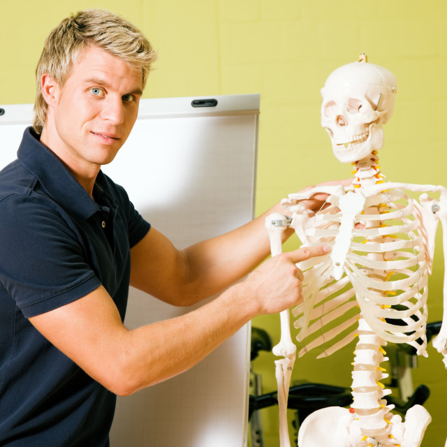 """explaining basic anatomy in gym"" stock image"