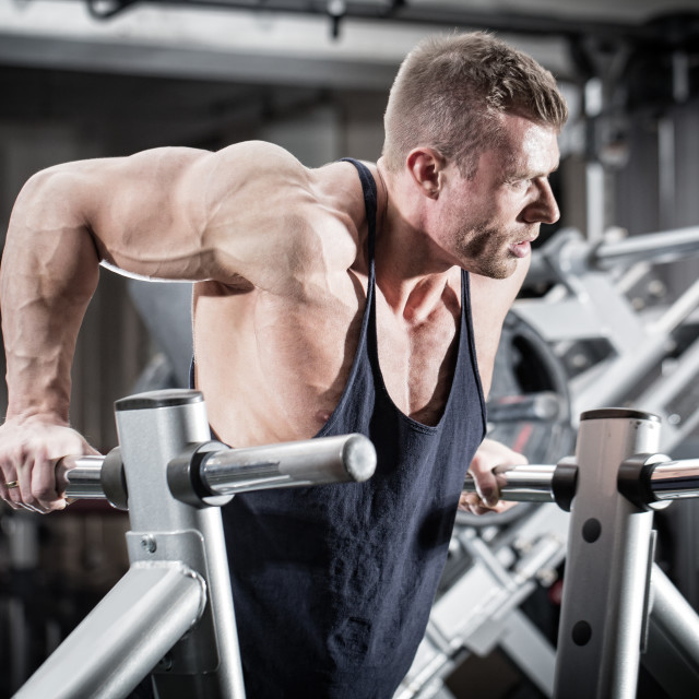 """Man in gym at dip exercise"" stock image"