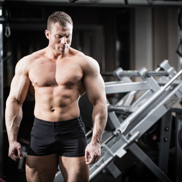 """Strong man doing bodybuilding in gym"" stock image"