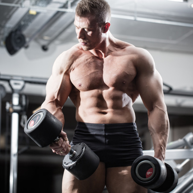 """Bodybuilder in gym at fitness training with barbells"" stock image"