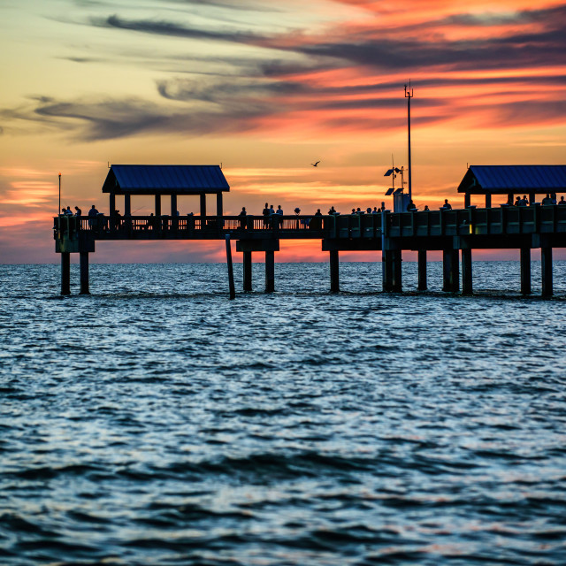 """Watching Final Light At Clearwater"" stock image"