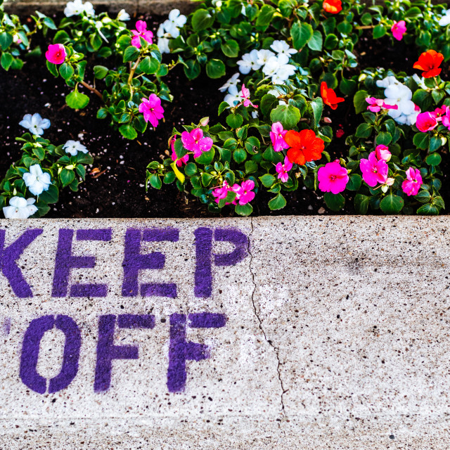 """KEEP OFF THE FLOWERS"" stock image"