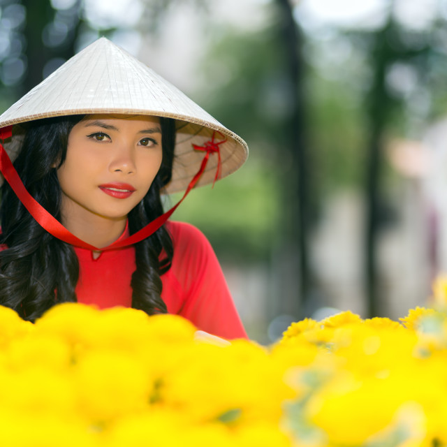 """Young Vietnamese woman in a traditional hat"" stock image"