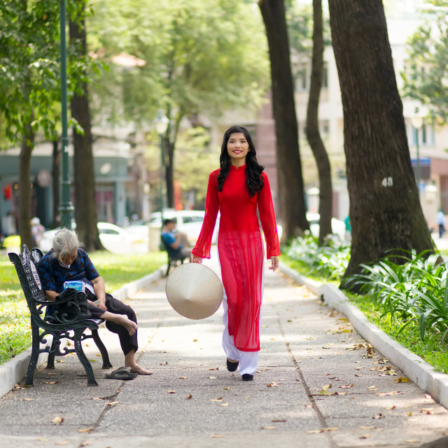 """Elegant young Vietnamese woman in a park"" stock image"