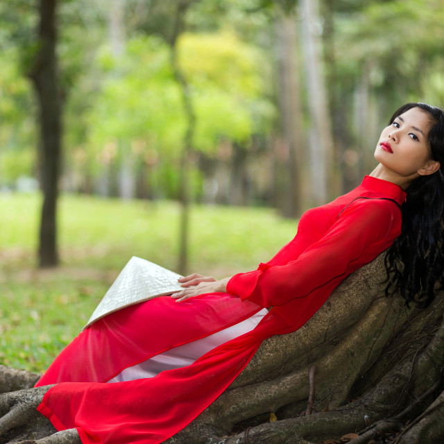 """Pretty Vietnamese lady relaxing on tree roots"" stock image"