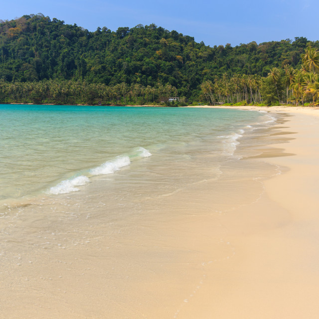 """Tropical beach in Thailand"" stock image"