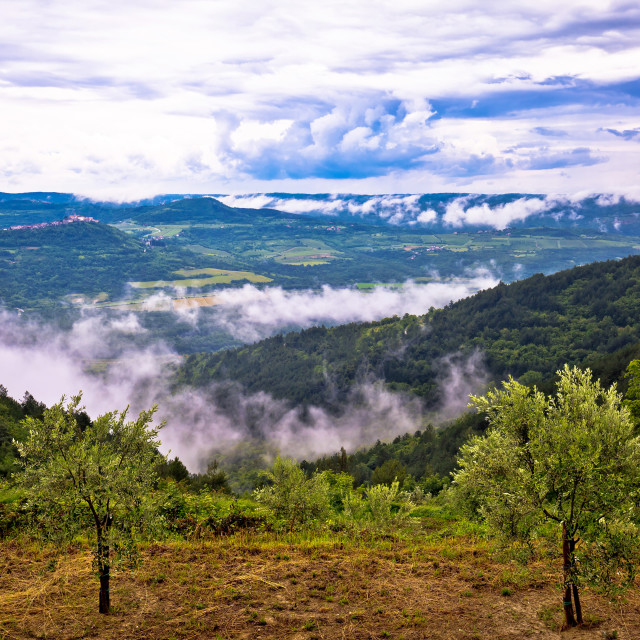 """Town of Motovun landscape in fog"" stock image"