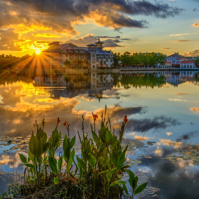 """Celebration Orlando Sunset Heaven"" stock image"