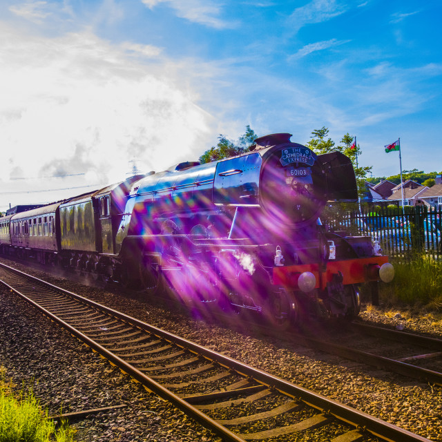 """Flying Scotsman"" stock image"