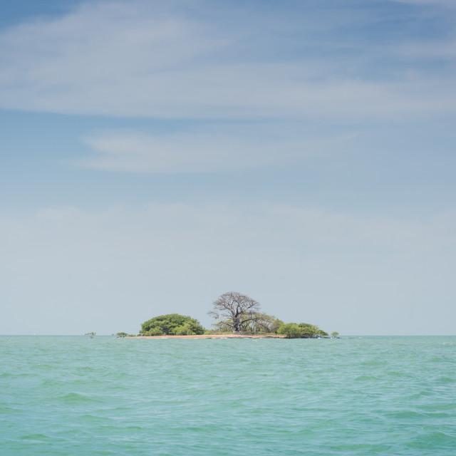 """A tiny island in the Bijagos archipelago, Guinea Bissau"" stock image"