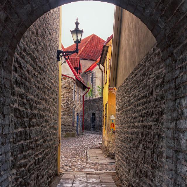 """""""Hallway In Tallinn"""" stock image"""