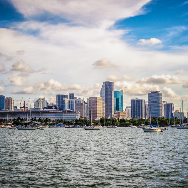 """Yachts and Cruise Miami Skyline"" stock image"