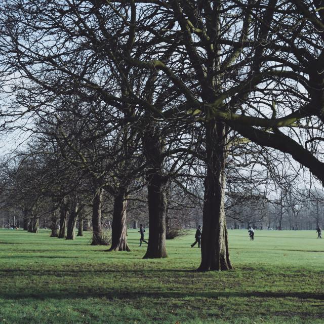 """Kensington Gardens"" stock image"