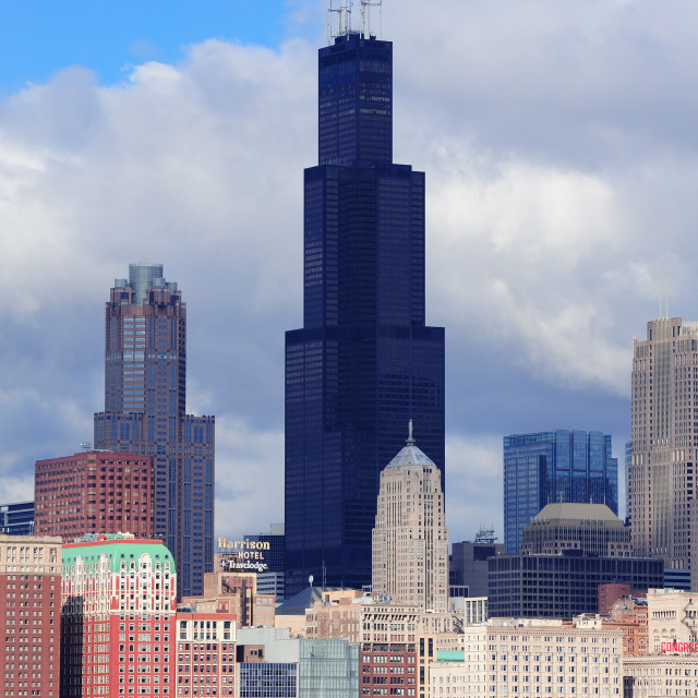 """""""Willis Tower in Chicago"""" stock image"""