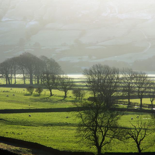 """Edale Valley, Derbyshire,UK"" stock image"