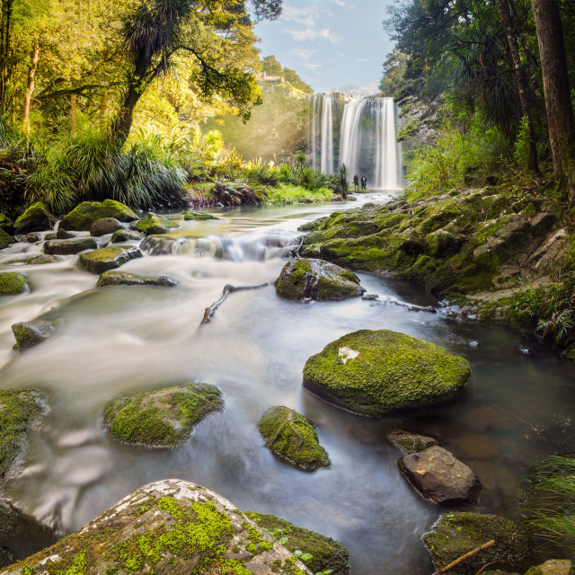 """Whangarei falls New Zealand"" stock image"