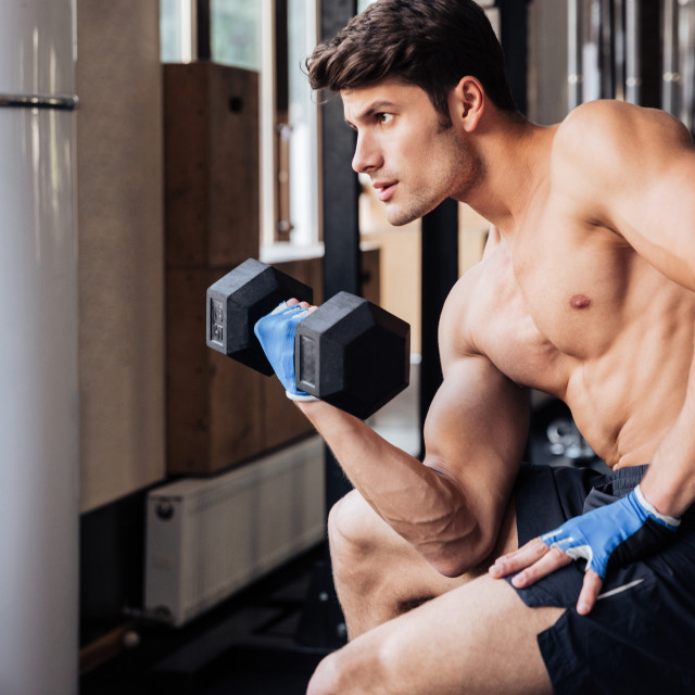 """Portrait of a male bodybuilder workout with dumbbell in gym"" stock image"