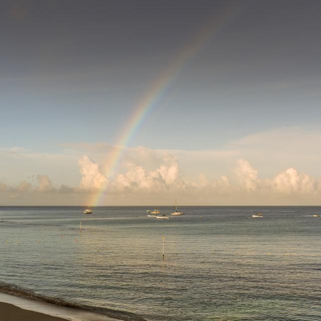 """""""Beach, Barbados"""" stock image"""