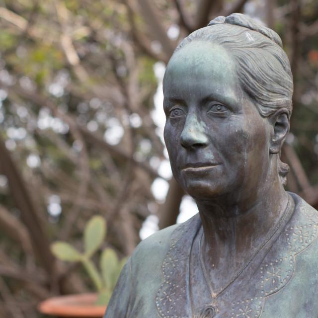 """""""bust of Lady Florence Trevelyan"""" stock image"""