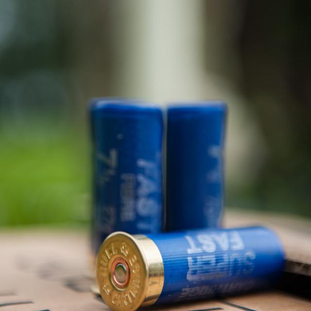 """""""Shotgun Cartridges"""" stock image"""