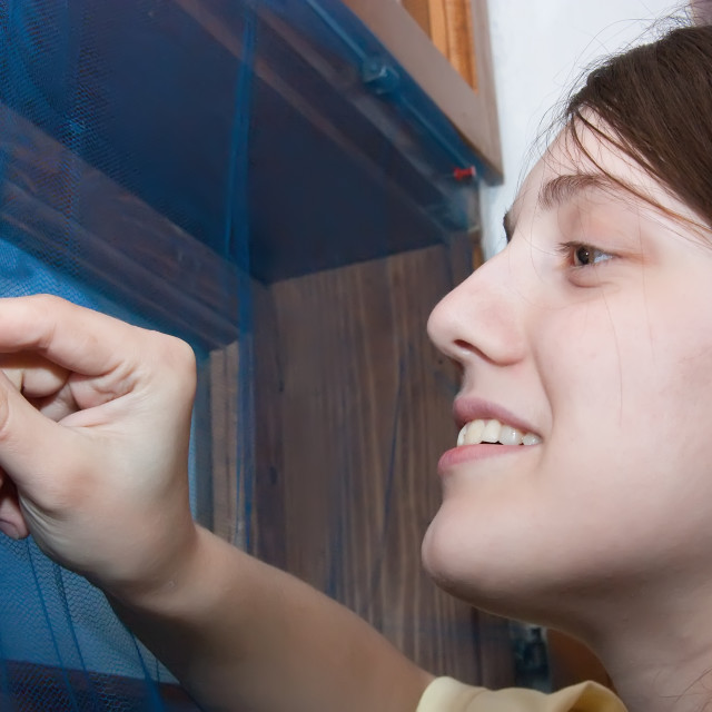 """""""Girl is making mosquito screen"""" stock image"""