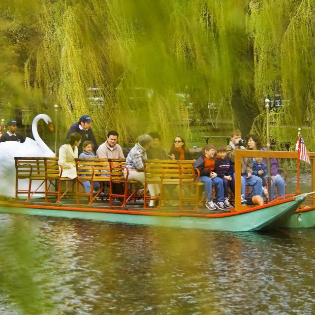 """Swan pedal boat in park"" stock image"