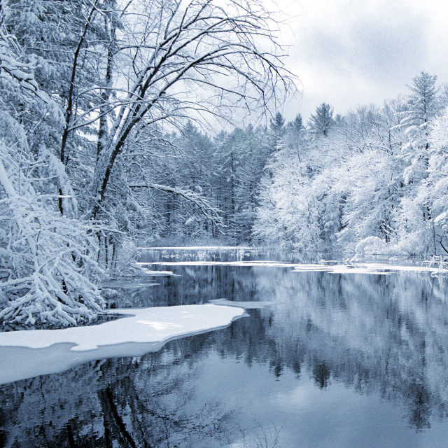 """Winter pond"" stock image"