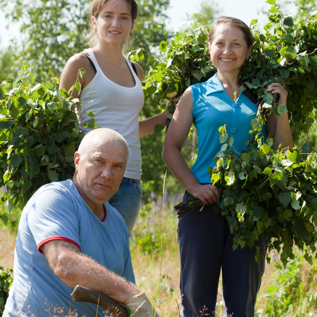 """""""Family making birch branches"""" stock image"""