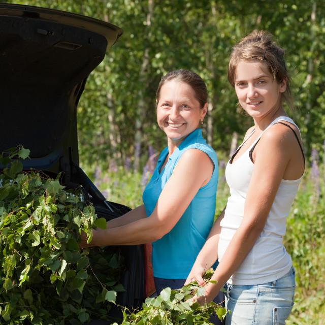 """women making birch branches"" stock image"