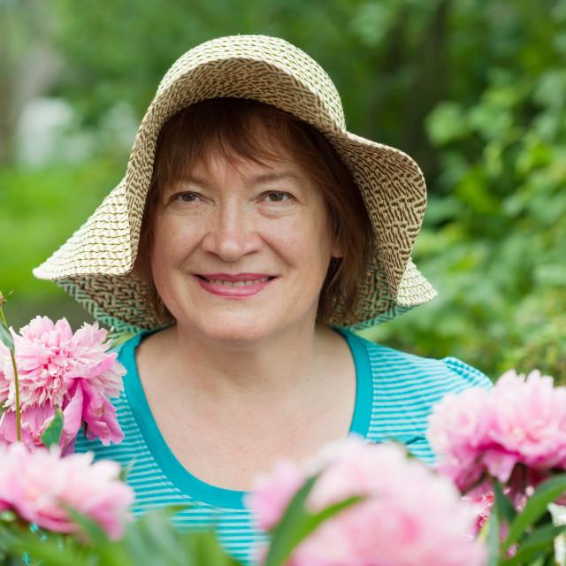 """""""gardener in peony plant"""" stock image"""