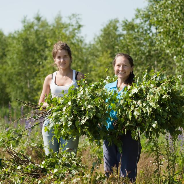 """women making birch besom"" stock image"