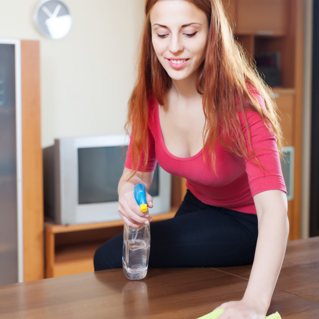 """""""girl in red cleaning table with furniture polish"""" stock image"""