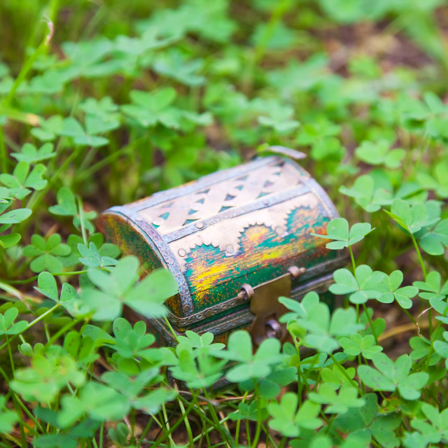 """treasure chest in clover plant"" stock image"