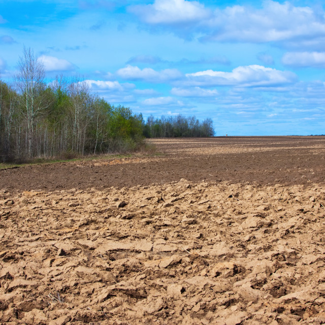 """Fresh tillage ploughed field"" stock image"