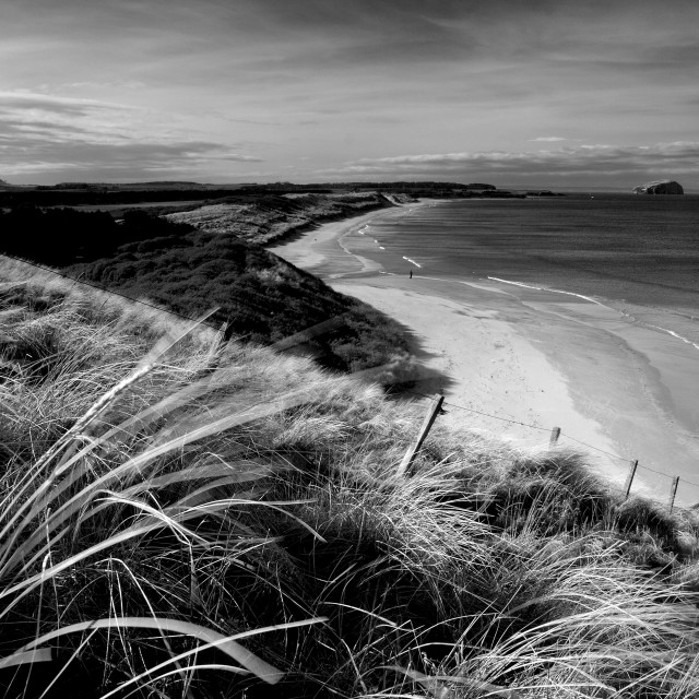 """Ravensheugh Sands"" stock image"