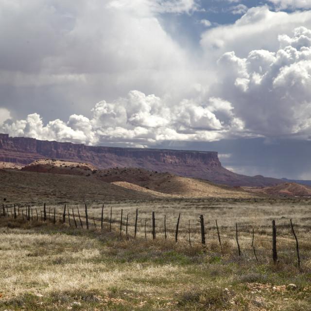 """Arizona Skies"" stock image"