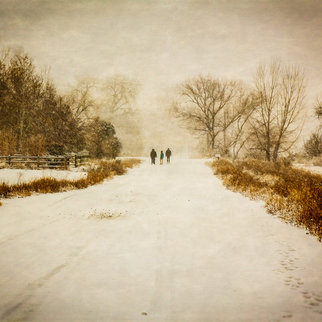 """A winters walk"" stock image"