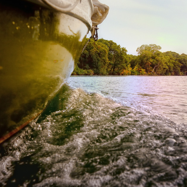"""Sailing on Sittee River in Belize"" stock image"