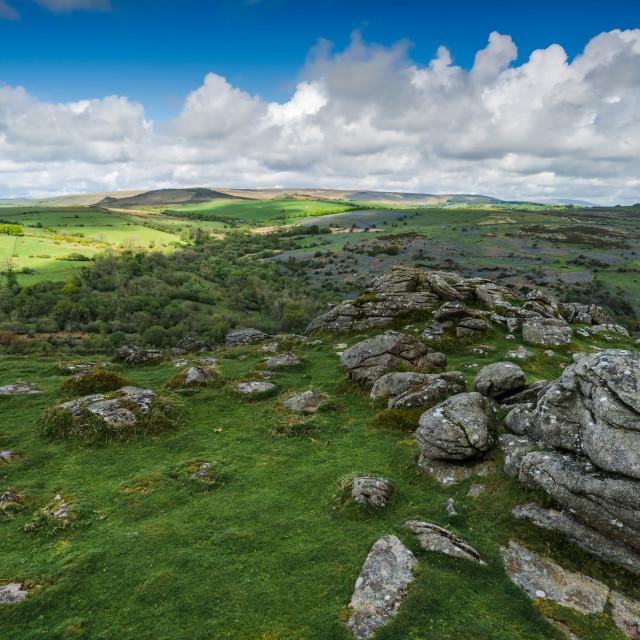 """Panoramic view on rocky hills in Dartmoor"" stock image"