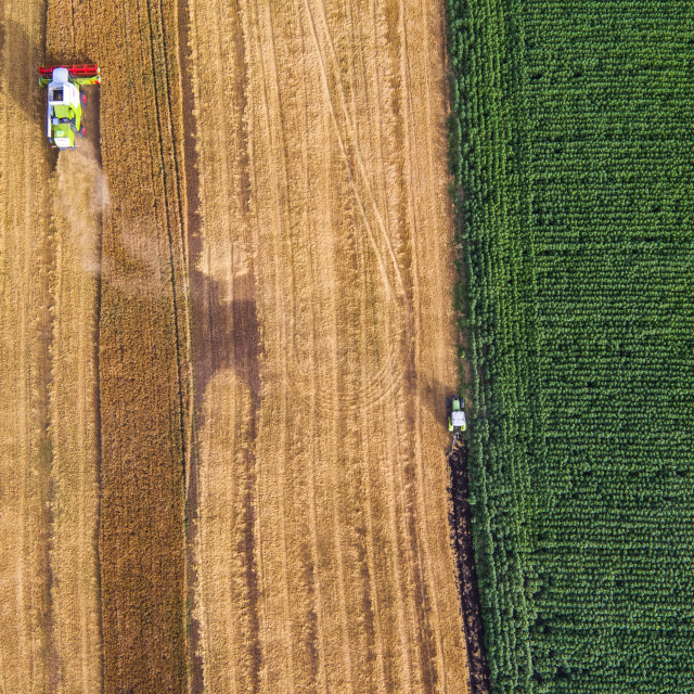 """""""Aerial view of combine on harvest field"""" stock image"""