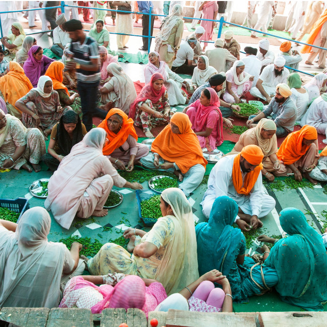 """""""Processing Chilly for the Langar (Free food) at the Golden Temple or Harmandir Sahib, Amritsar, Punjab, India"""" stock image"""