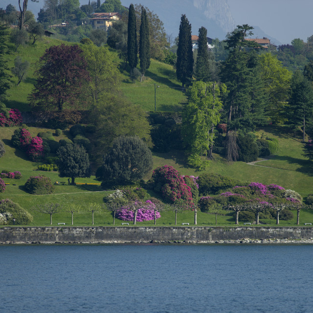"""Lake Como, Villa Melzi"" stock image"