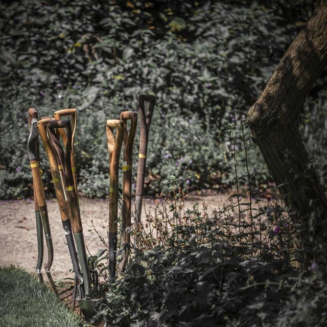 """Garden tools"" stock image"